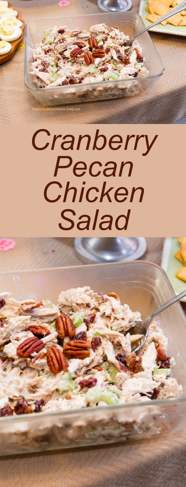 Cranberry Pecan Chicken Salad long pin for Pinterest with two images and a title