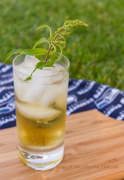 Lemon Verbena and Basil Simple Syrups Lemon Verbena Lemongrass Soda  flavored simple syrup #lemonVerbena #basil
