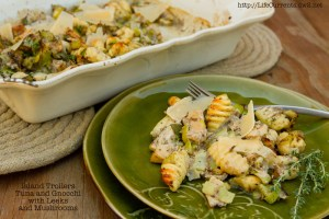 Gnocchi with Mushrooms and Island Trollers Tuna | Life Currents
