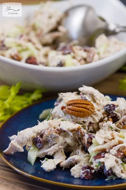 Cranberry Pecan Chicken Salad Recipe - easy - delicious - budget-friendly