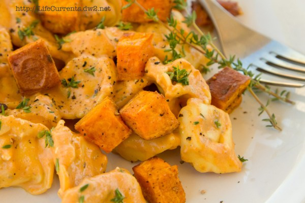 Pumpkin Lasagna with Roasted Butternut Squash featured recipe for Cheese Tortellini in Pumpkin Gorgonzola Sauce with Roasted Sweet Potatoes