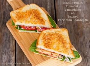 Tuna Cake Sandwiches