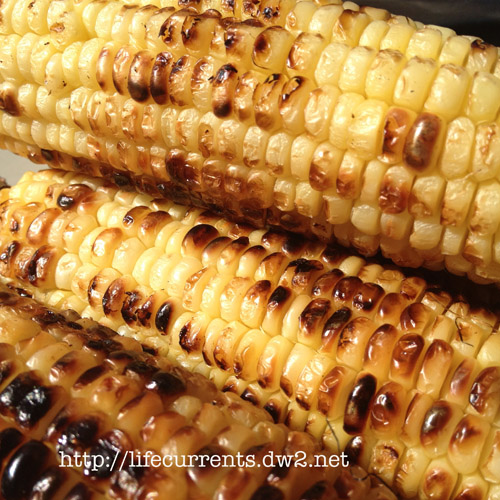 Grilled Corn on the Cob for my favorite Summer Salad | Life Currents