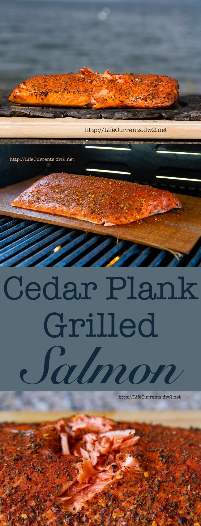 Cedar Plank Grilled Salmon - how to grill salmon on a cedar plank, all the tips and tricks you'll need to create a delicious dinner!