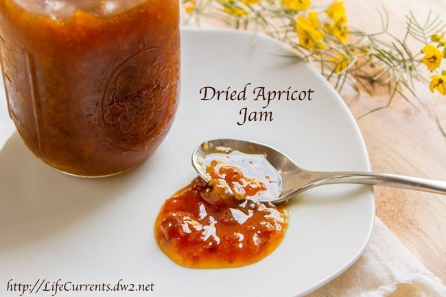 Dried Apricot Jam by Life Currents https://lifecurrentsblog.com