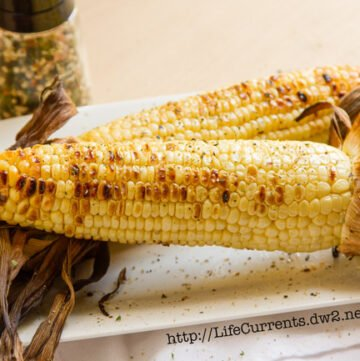 summer grill spice blend for all your summer BBQ's. Put it on Corn on the Cob, burgers, steak, fish, the options are endless! by Life Currents http://lifecurrentsblog.com