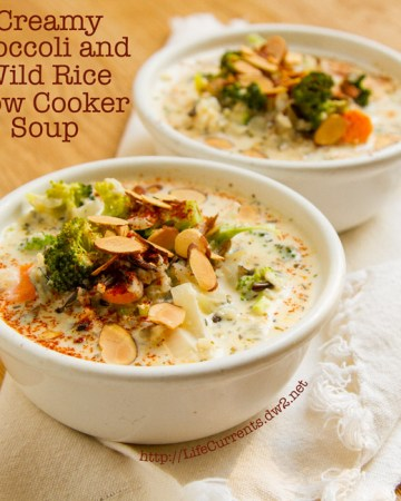 Creamy Broccoli and Wild Rice Slow Cooker Soup is a great warming soup that's filled with veggies and whole grain goodness http://lifecurrentsblog.com