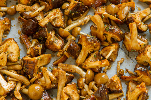 Roasted Mushrooms by Life Currents