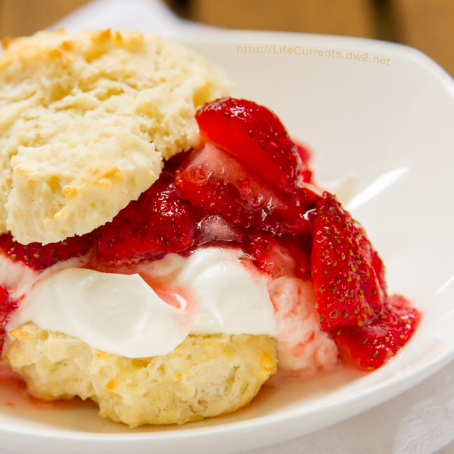 Crescent Chicken Squares - featured recipe Mom's Strawberry Shortcake is the perfect dessert for summer!