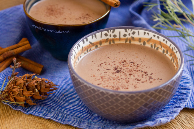 Mexican Mocha - thick, rich, healthy, and perfect for the cold winter months