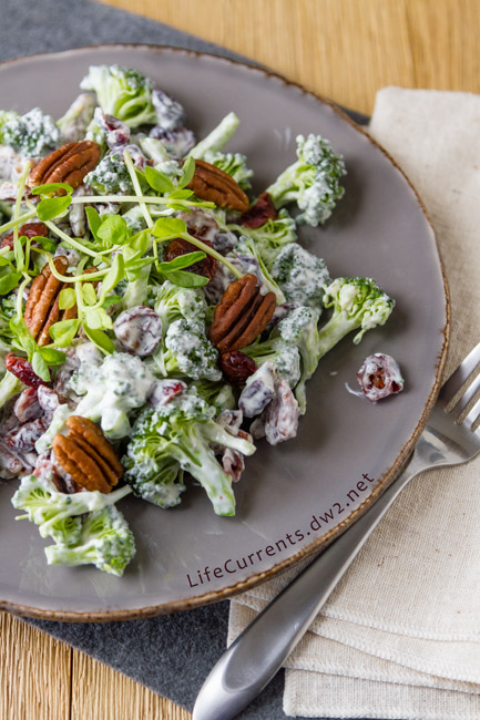 Summer salad featured recipe for Cranberry Pecan Broccoli Salad - great salad that you can make ahead & take to potlucks and family gatherings; it's filled with veggies and super yummy!