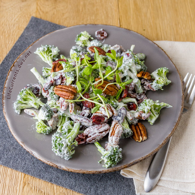 Most Popular Recipes of 2017: the year in review - Cranberry Pecan Broccoli Salad is a great salad that you can make ahead & take to potlucks and family gatherings; it's filled with veggies and super yummy!