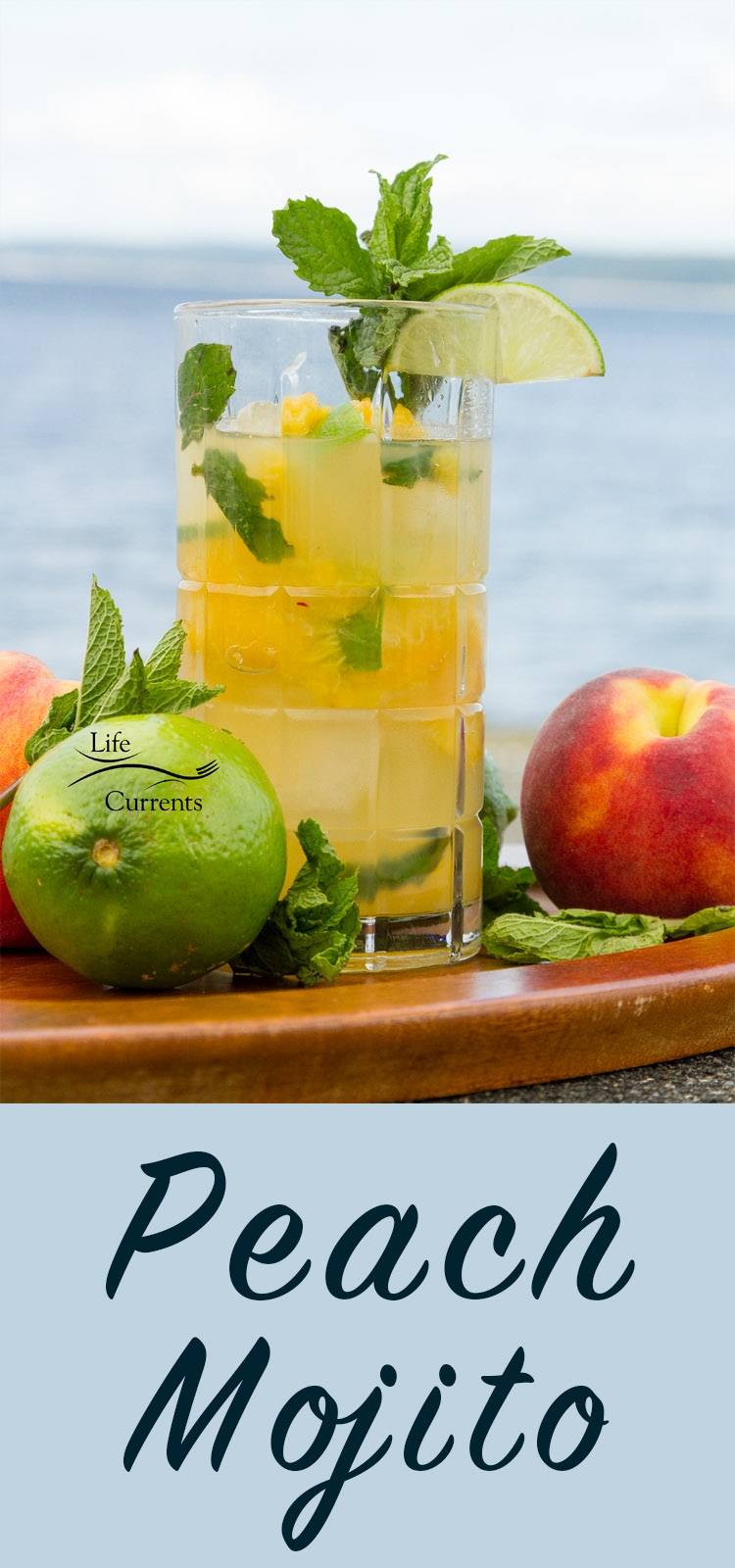 Peach Mojito - nothing better than enjoying a refreshing summer peach mojito drink poolside or at the beach - fresh peaches, mint and rum!