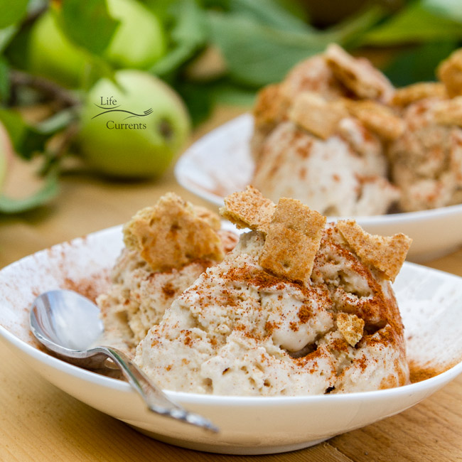 This Apple Pie Ice Cream is spiced just right, a little cinnamon a nice amount of apples. And, it's super easy to make. The trick is using applesauce in the mix.