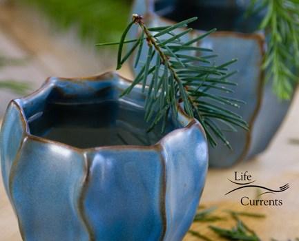 Healing Evergreen Tea