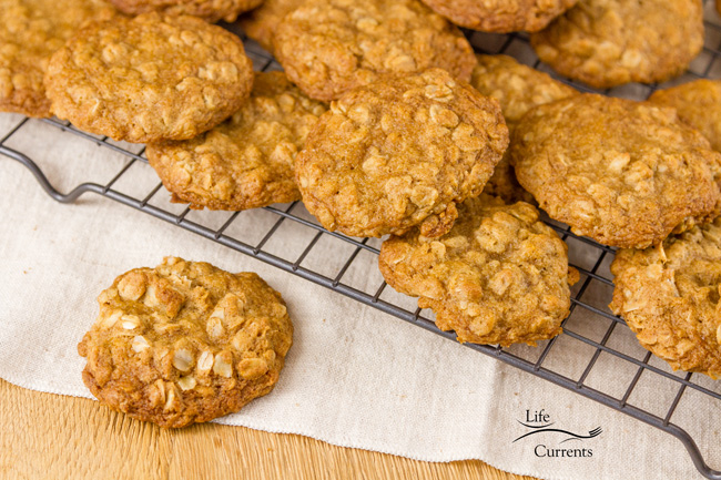 Oatmeal Sandwich Cookies - just the simple oatmeal cookie with no filling is great