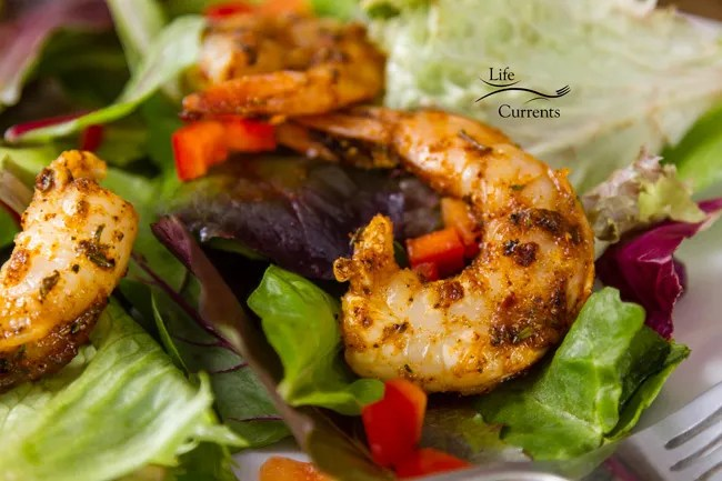 Shrimp in Cajun Spice Oil - shrimp on a bed of field greens, mixed lettuce, with Cajun spices