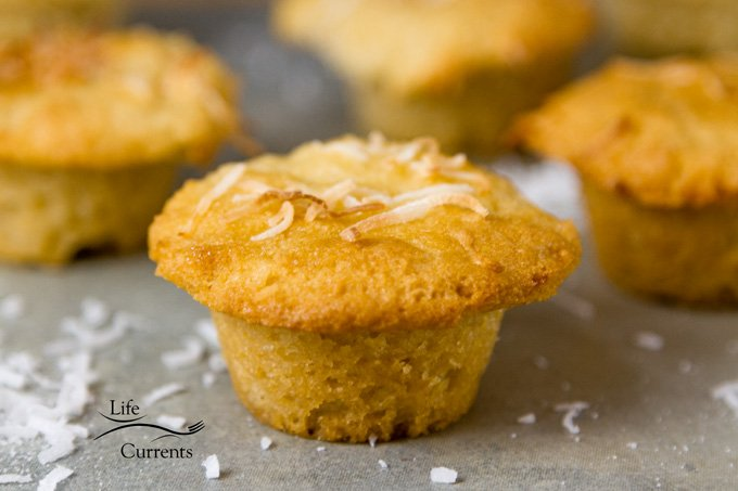 Gluten-Free Coconut Muffins waiting to be eaten for breakfast or snack