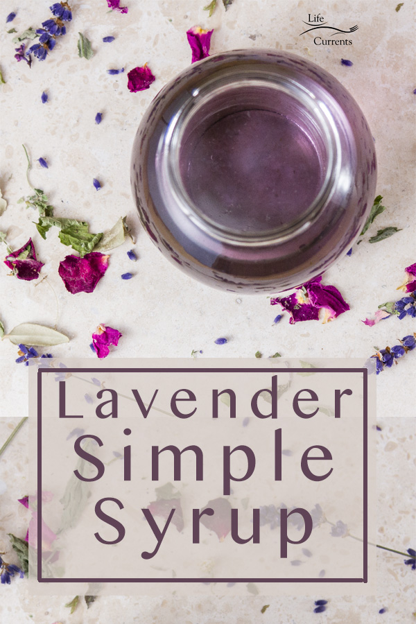 Lavender Simple Syrup Recipe is a great way to get the wonderful flavor of lavender into all kinds of desserts. It's easy to make, and lovely in special desserts.