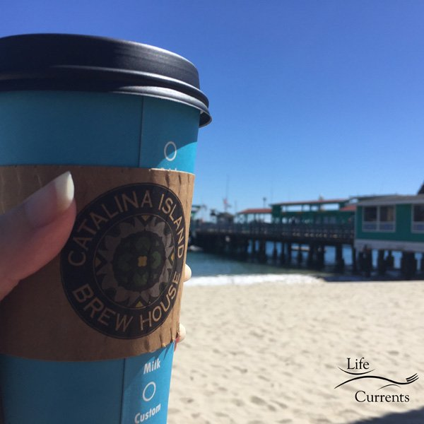 Can't Miss Activities on Catalina Island - the brew house latte
