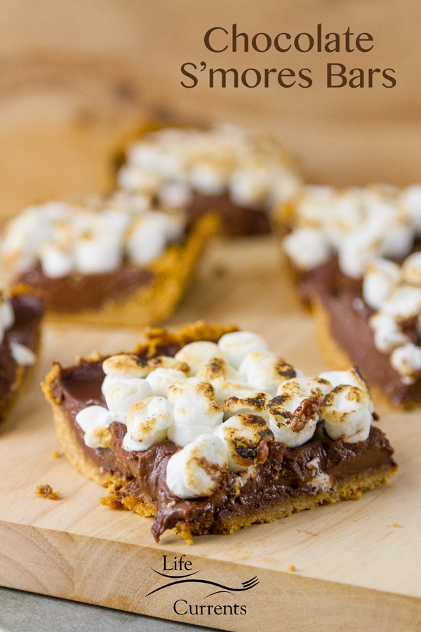 Chocolate S'mores Bars with a nice soft chocolate layer