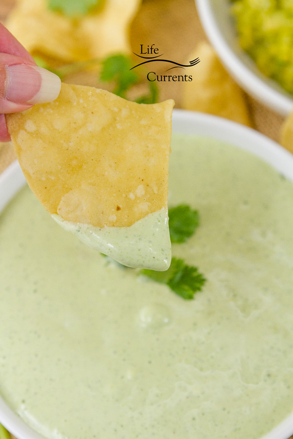 Candied Jalapeno Ranch Dip Recipe bite in and the spicy jalapeno bites back a little but the creamy sour cream is there to help cool it all down.