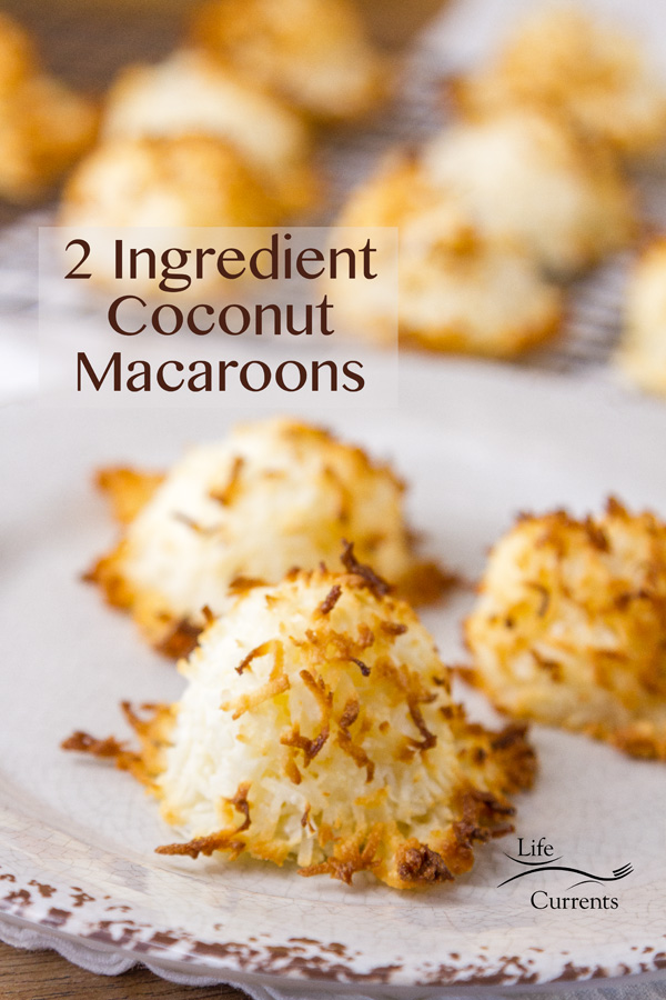 2 Ingredient Coconut Macaroons Life Currents