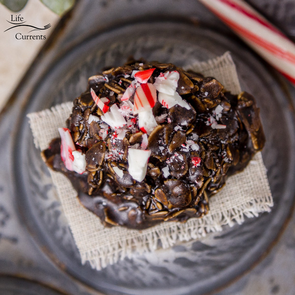 Peppermint Mocha Candy Cookies You simply must try them! And, with about 5 minutes worth of work, why wouldn't you just go jump in the kitchen right now and whip up a batch of these!