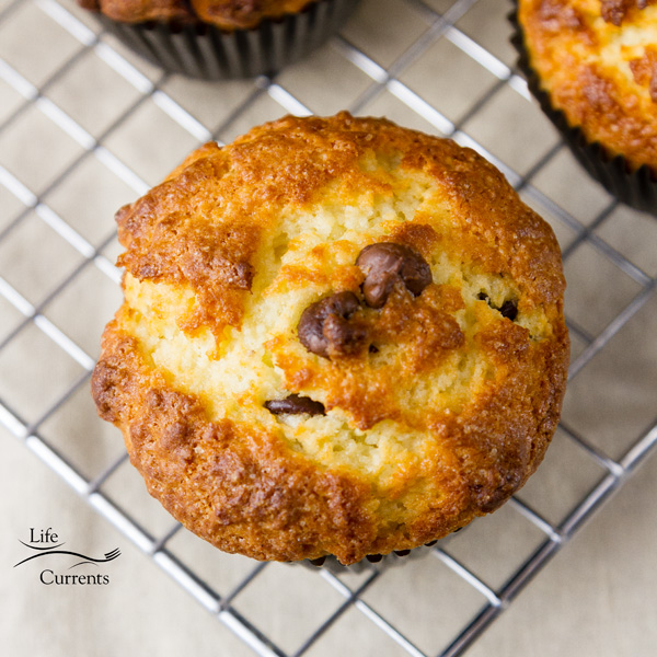 Mint Chocolate Chip Greek Yogurt Muffins Easy and delicious, these healthy minty yogurt muffins are packed with flavor.