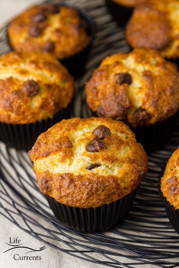 Mint Chocolate Chip Greek Yogurt Muffins Grab and go muffins are a busy person's dream.