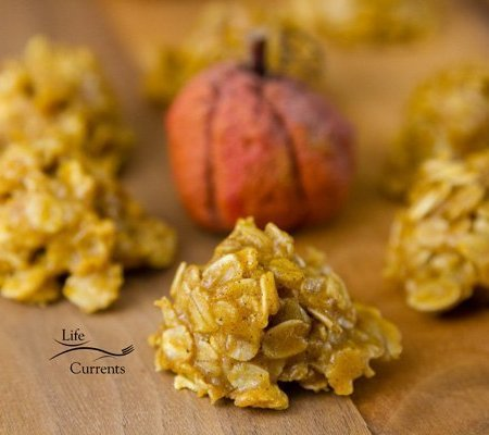 Pumpkin Spice Candy Bites no bake easy to make delicious