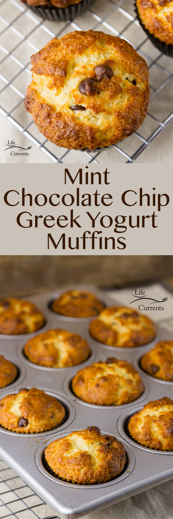 Mint Chocolate Chip Greek Yogurt Muffins - A perfect combination of fresh minty flavor, sweet chocolate chips, and healthy yogurt in a nice sturdy muffin. Easy and delicious, these healthy minty yogurt muffins are packed with flavor.