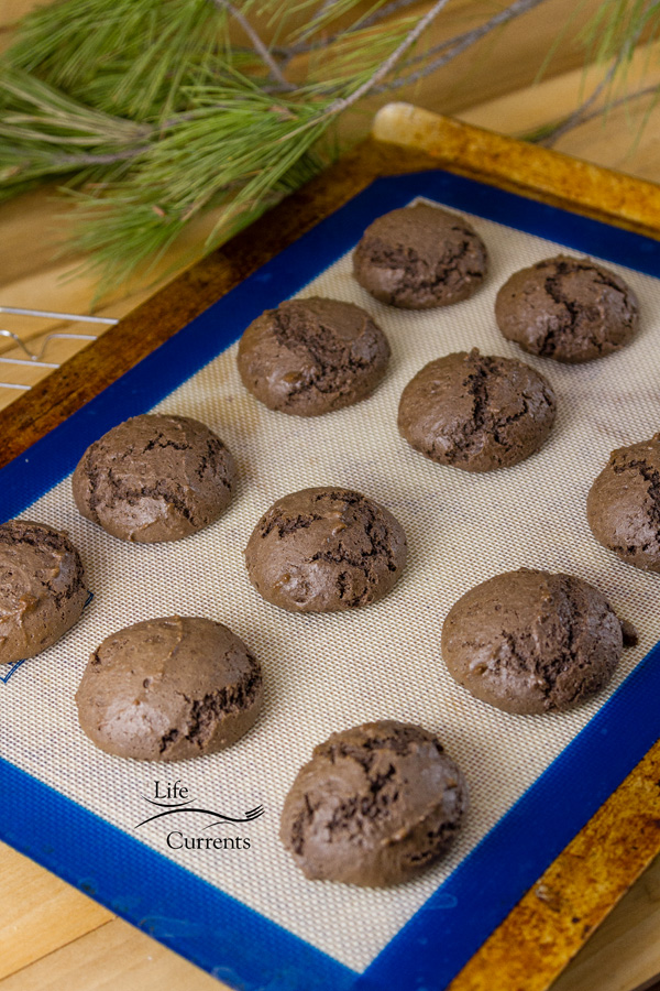 Chocolate Marshmallow Moonpies - cookies cooling on the cooling rack