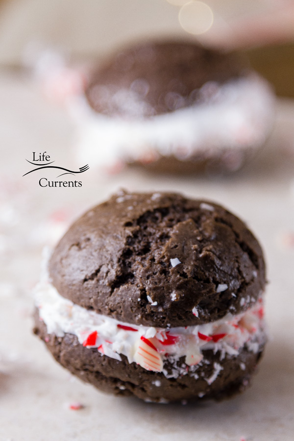 Make these Peppermint Brownie Sandwich Cookies for Santa, and he'll surely leave extra presents for you.