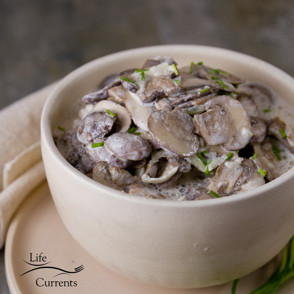 Garlic Mushrooms in Sour Cream - Try adding these mushrooms to a baked potato. Or, cook up some pierogi and add these sour cream mushrooms.