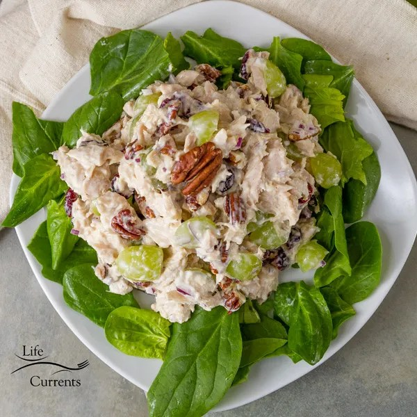 Cranberry Pecan Tuna Salad - try a new twist on the traditional tuna salad Recipe - you'll love this easy to make fresh fruity take on tuna salad