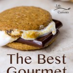 a single Gourmet S'mores with 2 whole wheat crackers, melting dark chocolate, and golden toasted marshmallows with the title for a pinnable image