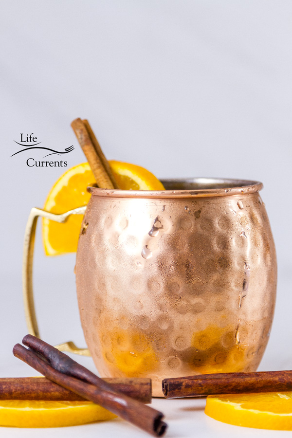an icey copper mug with orange slices and cinnamon sticks on a white background