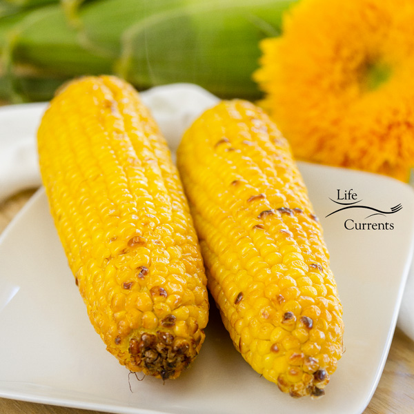 two ears of corn, roasted on a white plate with a sunflower and some corn still in the husk in the background