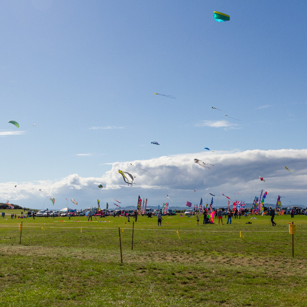 The Kite Festival in Whidbey Island