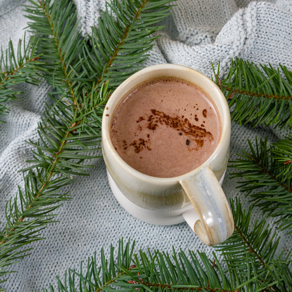 square crop hot cocoa on blue background with evergreens