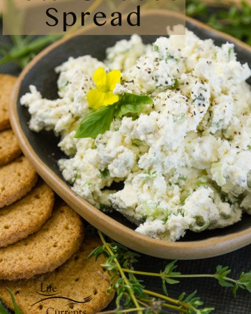 Feta cheese spread in a small dark bowl with crackers surrounded by fresh herbs