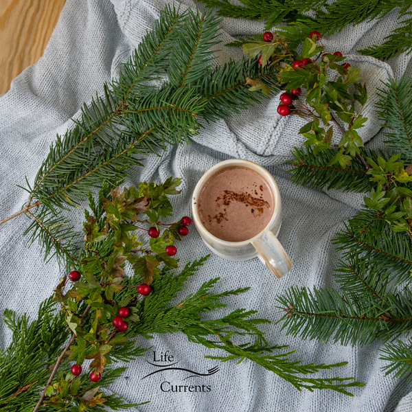 top down shot with lots of room around the mug of hot cocoa and evergreens