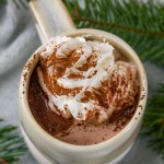 whipped cream on top of hot cocoa with tree boughs