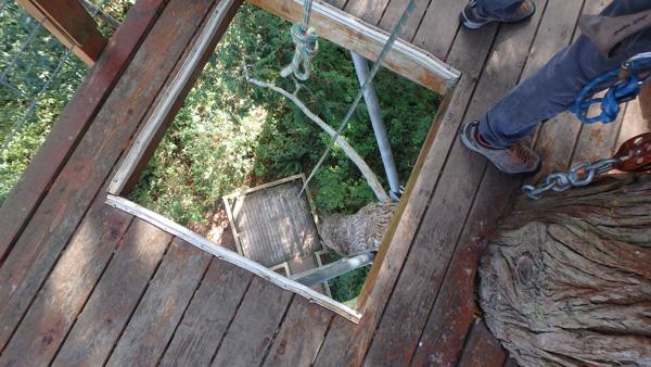 looking down the final descent Zipline on Camano Island