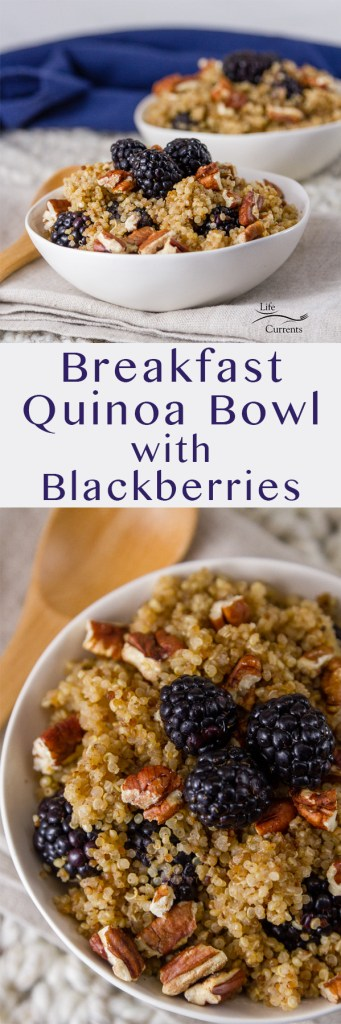 two images of Breakfast Quinoa Bowl with Blackberries in a long pin for Pinterest