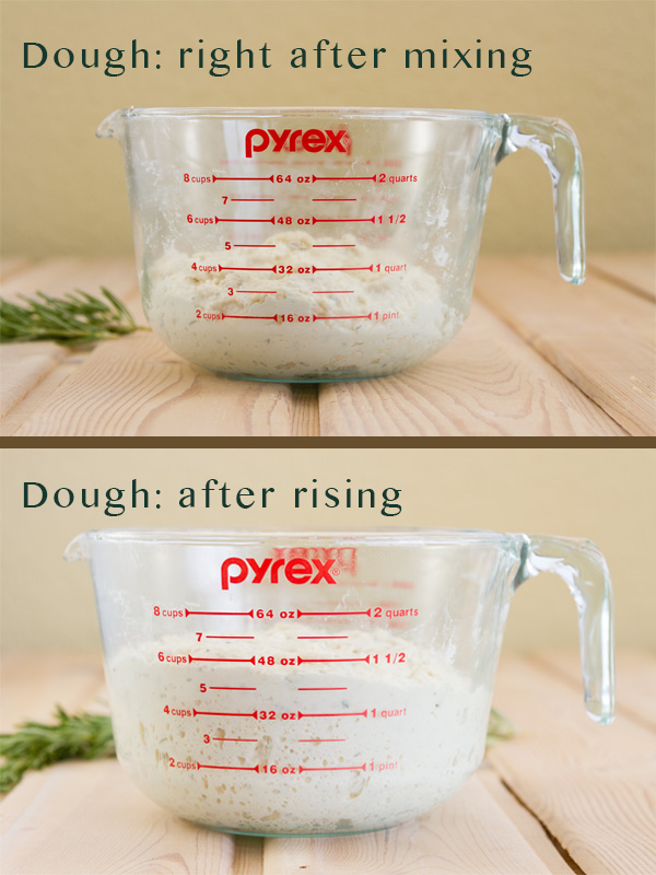 Two images comparing dough rising. Top: title: dough: right after mixing, and the dough in the glass measuring cup. Bottom image: title: Dough: after rising with the dough in the same glass measuring cup
