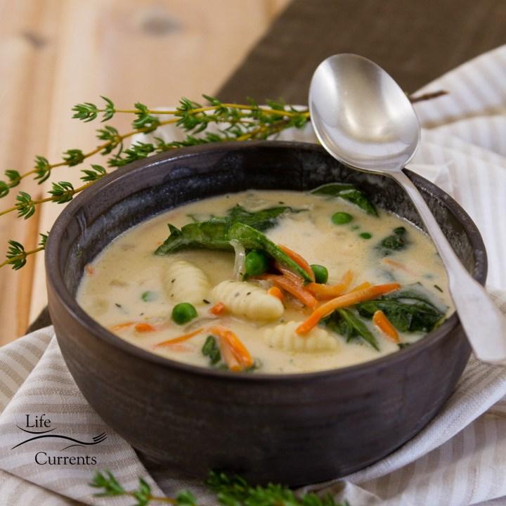 square crop of Vegetable Gnocchi Soup Recipe