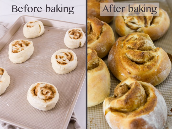 process shots for how to make cinnamon rolls: baking