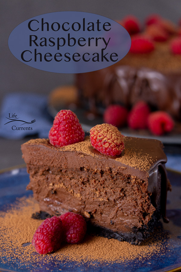 A slice of Chocolate Raspberry Cheesecake dusted with cocoa powder and garnished with fresh raspberries.